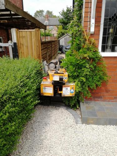 Squeezing the stump grinder in at Hazel Grove