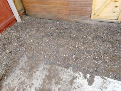 Stump grinding in Sale After