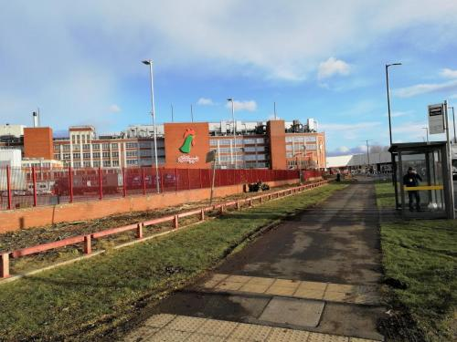 Tree Clearance Trafford Park After